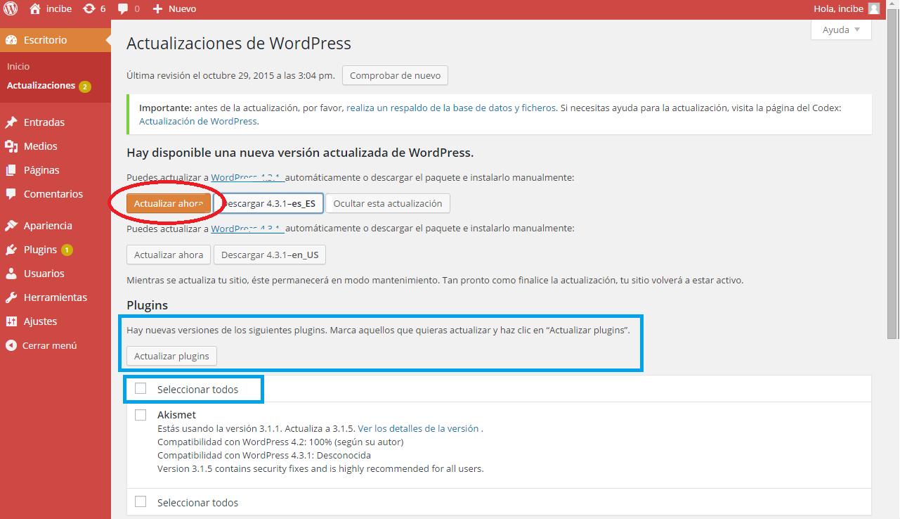 Pantalla de actualización de WordPress: Selección de actualización del core o actualización de plugins