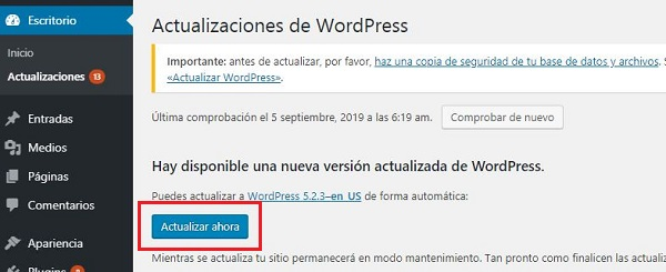 Imagen que muestra las actualizaciones disponibles, tanto del CMS como de plugins o temas. Se muestra el botón Actualizar ahora, en referencia a WordPress