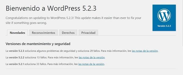 Imagen que muestra que la actualización ha concluido con éxito. El literal que aparece es Bienvenido a WordPress 5.2.3.