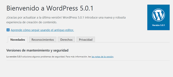 Imagen que muestra que el WordPress se ha actualizado correctamente