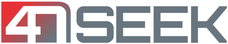 Logo 4NSEEK